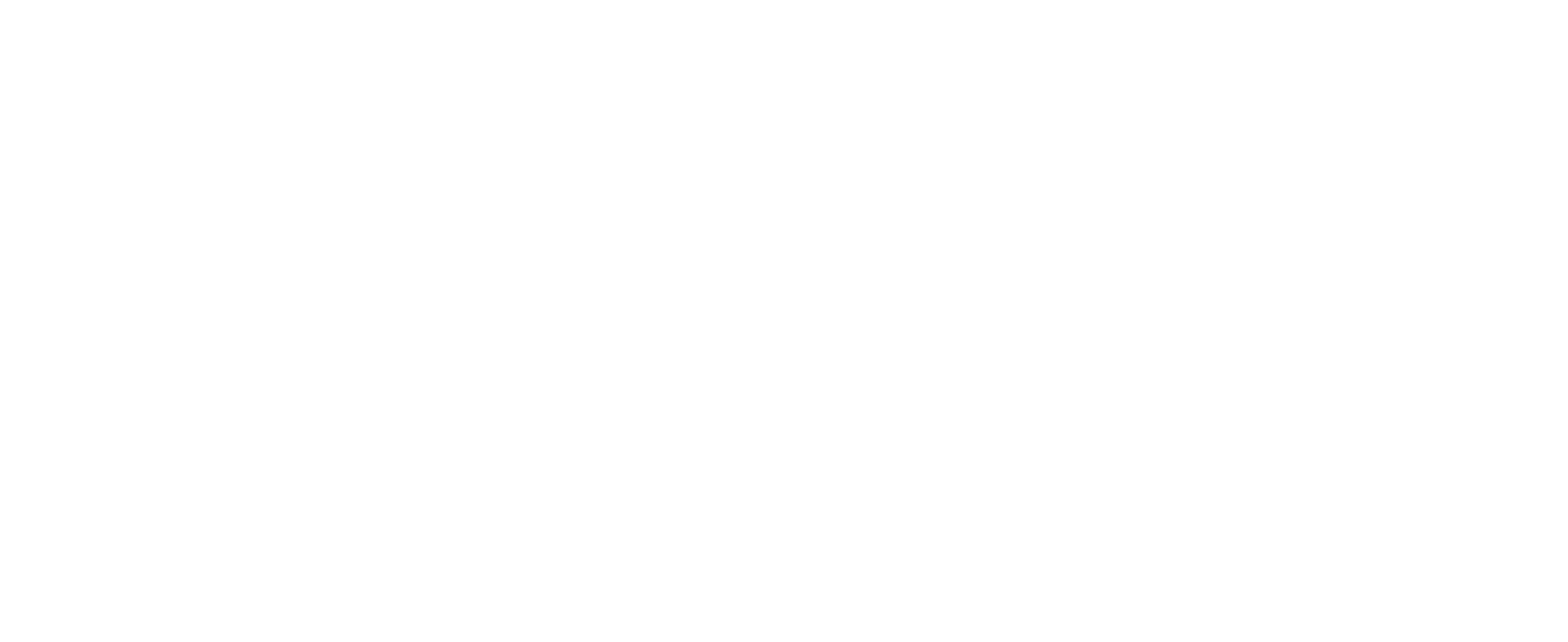 American Psychiatric Association, Annual Meeting, May 1-3, 2021, Finding Equity THrough Mind and Body